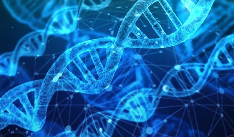 Weetjes over DNA